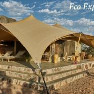 Eco-Explorer1